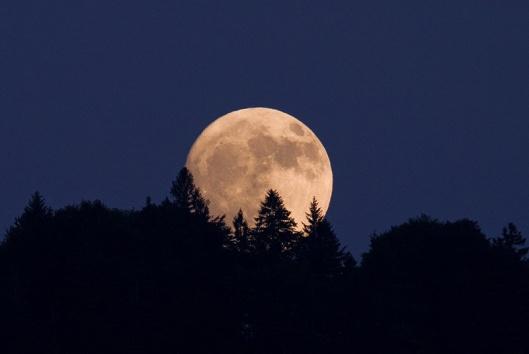maan-opkomend